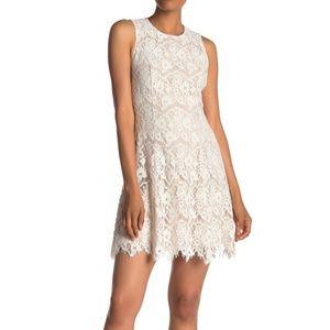 Vince Camuto Ivory Lace A-Line Cocktail Dress 14